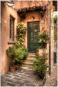 Green Door - Bellagio by Brad Jaeck